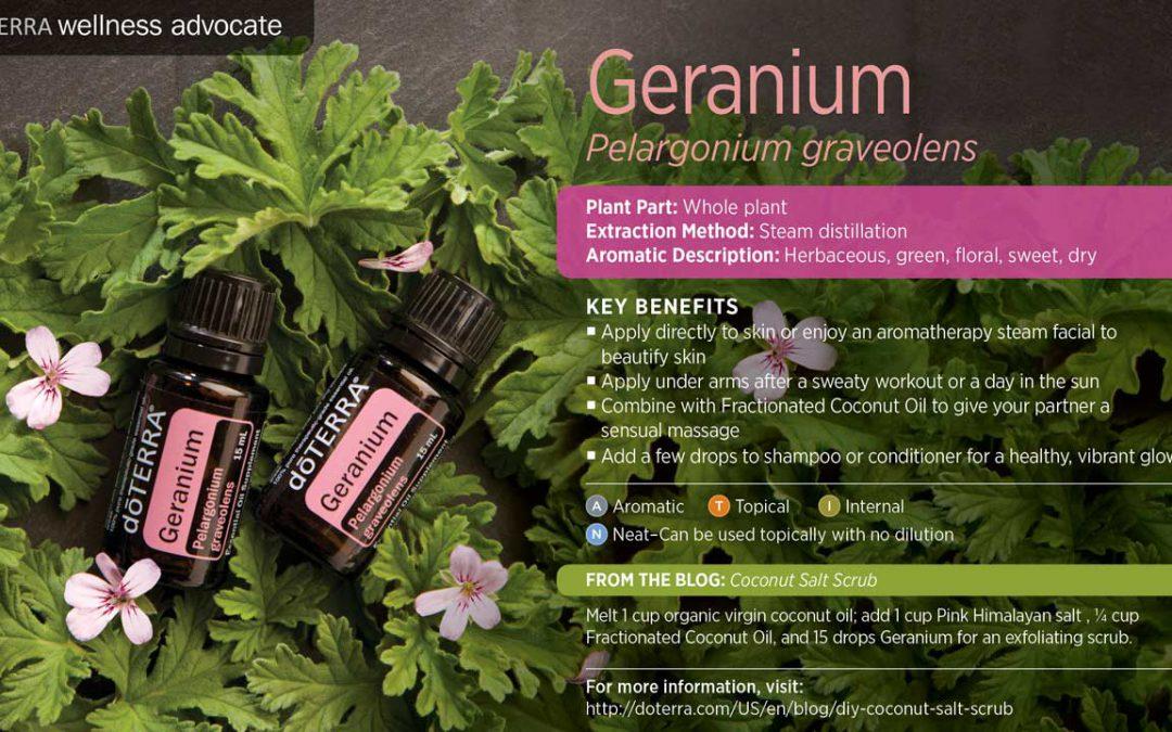 doTERRA's Geranium Essential Oil – Rose Geranium